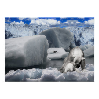 Eisbären Poster