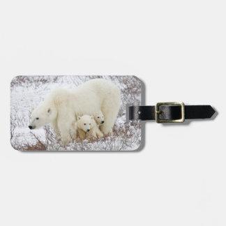 Eisbären weiblich und zwei Junge Koffer Anhänger