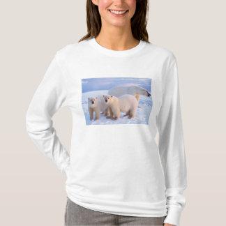 Eisbärsau mit Jungen auf dem Packeise, Küsten T-Shirt