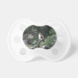 Eisenhaltiger Falke Schnuller