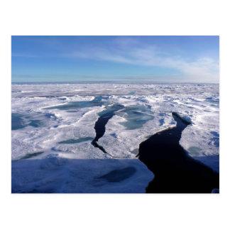 Eisfelder im Nordpolarmeer Postkarten