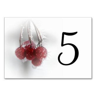 Eisige rote Beeren-Tischnummern Karte