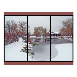 Eisige Teich-Postkarten Postkarte