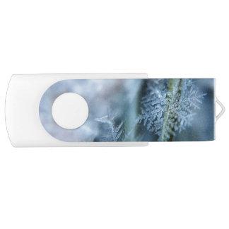 Eiskristall, Winterzeit, Schnee, Natur USB Stick