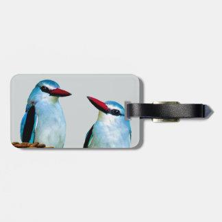 Eisvogel-Vögel Südafrika Gepäckanhänger