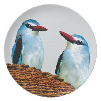 Eisvogel-Vögel Südafrika Teller