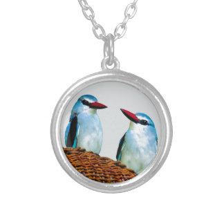 Eisvogel-Vögel Südafrika Versilberte Kette