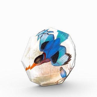Eisvogel-Vogel-Tier-Tier-Teich Acryl Auszeichnung