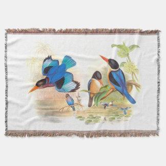 Eisvogel-Vogel-Tier-Tier-Teich Decke