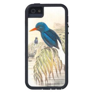 Eisvogel-Vogel-Tier-Tier-Teich Hülle Fürs iPhone 5