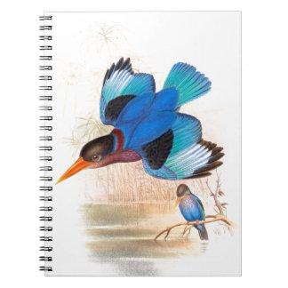 Eisvogel-Vogel-Tier-Tier-Teich Notizblock