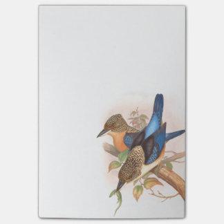 Eisvogel-Vogel-Tier-Tier-Teich Post-it Klebezettel
