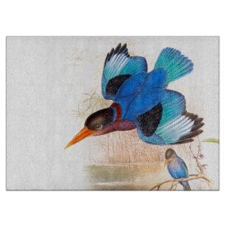 Eisvogel-Vogel-Tier-Tier-Teich Schneidebrett