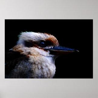 Eisvogelvogel Südafrika, Poster