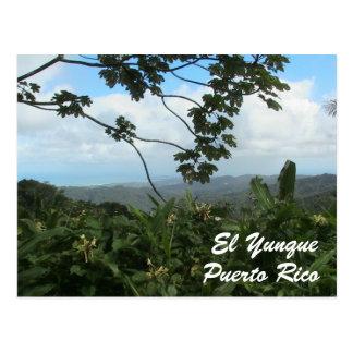 EL Yunque, Puerto Rico Postkarte