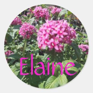 Elaine-Blumenaufkleber Runde Aufkleber
