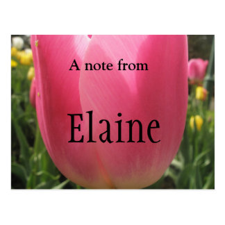 Elaine Postkarte