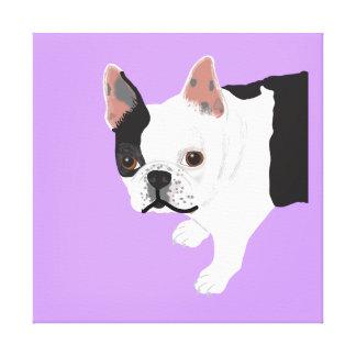 Elaine Toby Boston Terrier Galerie Falt Leinwand