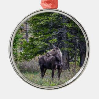 Elch-Mutter Silbernes Ornament
