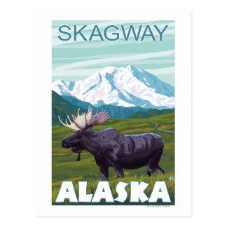 Elch-Szene - Skagway, Alaska Postkarte