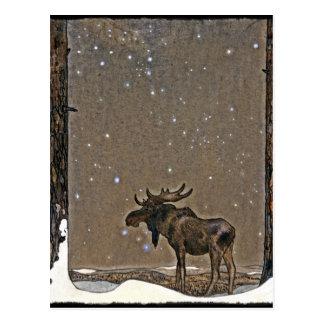 Elche im Schnee Postkarten