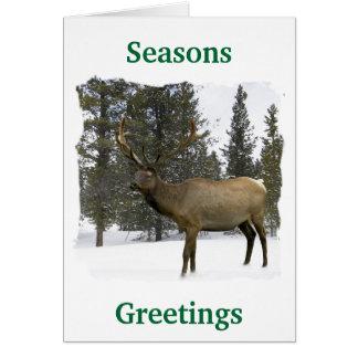 Elche im Winter Notecard Karte