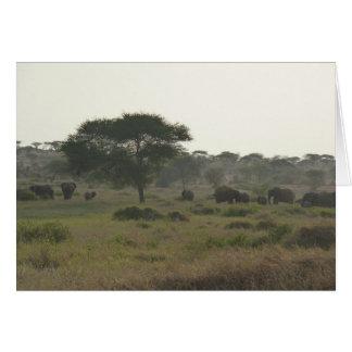 Elefant-Anmerkungs-Karte, afrikanische Karte
