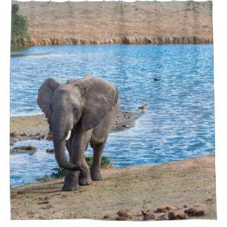 Elefant auf dem See Duschvorhang