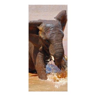 Elefant, der mit Wasser spielt Werbekarte