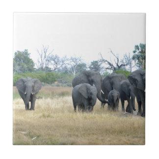 Elefant-Familie Tom Wurl.jpg Fliese