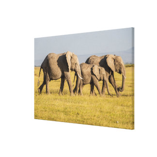 Elefant-Familien-Gehen Leinwanddruck