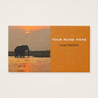 Elefant in den Sonnenuntergang-Visitenkarten Visitenkarten