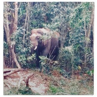 Elefant in Thailand Stoffserviette