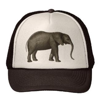 Elefant Trucker Kappe