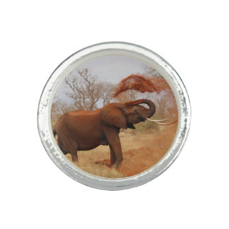 Elefant Foto Ring