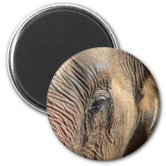 Elefant Runder Magnet 5,7 Cm