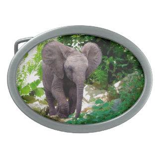 Elefant und Dschungel Ovale Gürtelschnallen