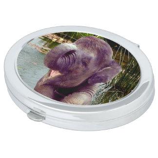 Elefant und Wasser Schminkspiegel