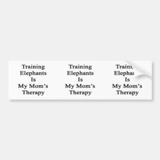Elefanten auszubilden ist die Therapie meiner Autoaufkleber