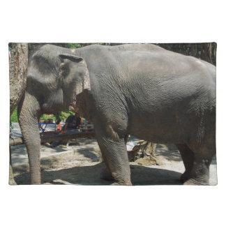 Elefanten in Thailand Tischset