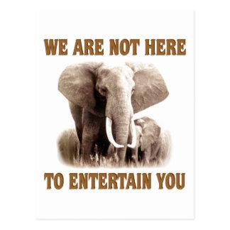 Elefanten verdienen Respekt Postkarte