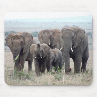 Elefantherden-Mausunterlage Mauspad