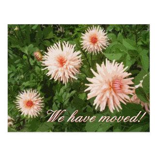 Elegante bewegliche Postkarten mit Chrysantheme-Bl