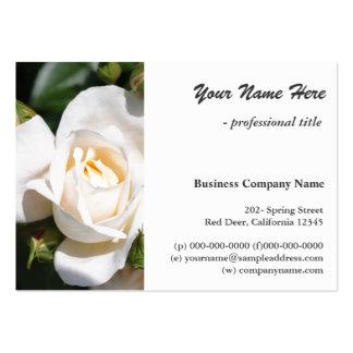 elegante reine weiße Rosen-Blume beruflich Visitenkarten