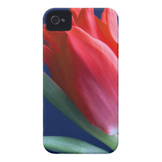 Elegante Rote Tulpe iPhone 4 Case-Mate Hülle
