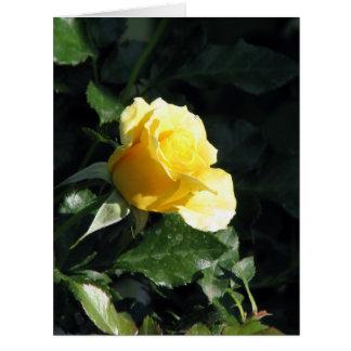 Elegante und untertriebene Single-Gelb-Rose in Grußkarten