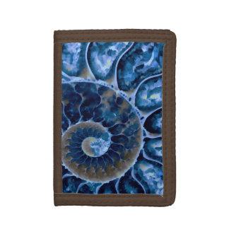 elektrischer blauer Nautilus