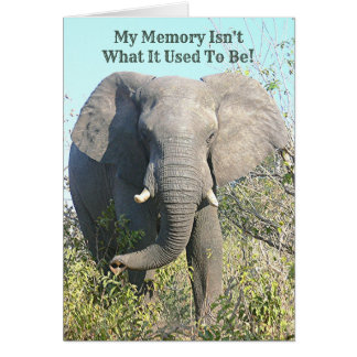 ELEPHANT/MY GEDÄCHTNIS IST NICHT, WAS ES KARTE