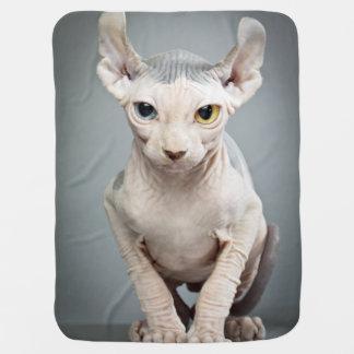 Elf-Sphinx-Katzen-Fotografie Kinderwagendecke