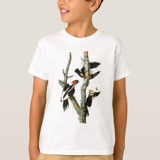 Elfenbein-berechnete Specht Audubon Vögel von T-Shirt